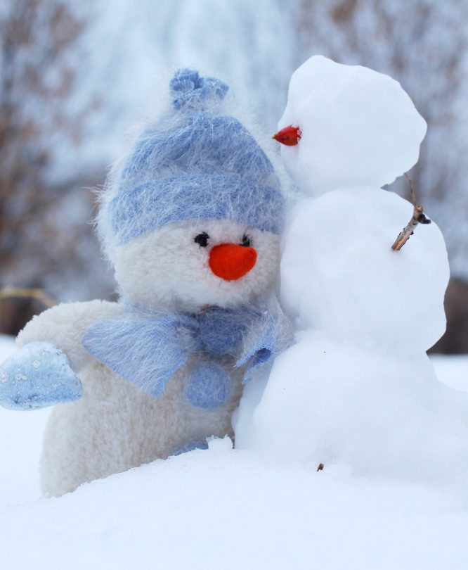 kolde vinterdage